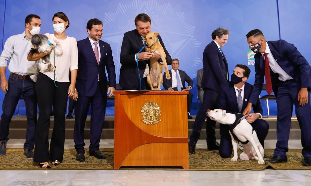 Acompanhado de seu cachorro Nestor, o presidente Jair Bolsonaro participa da cerimônia, no Palácio do Planalto, de sanção do projeto de lei que elevou a pena para quem praticar crimes de maus-tratos contra animais Foto: Carolina Antunes / PR