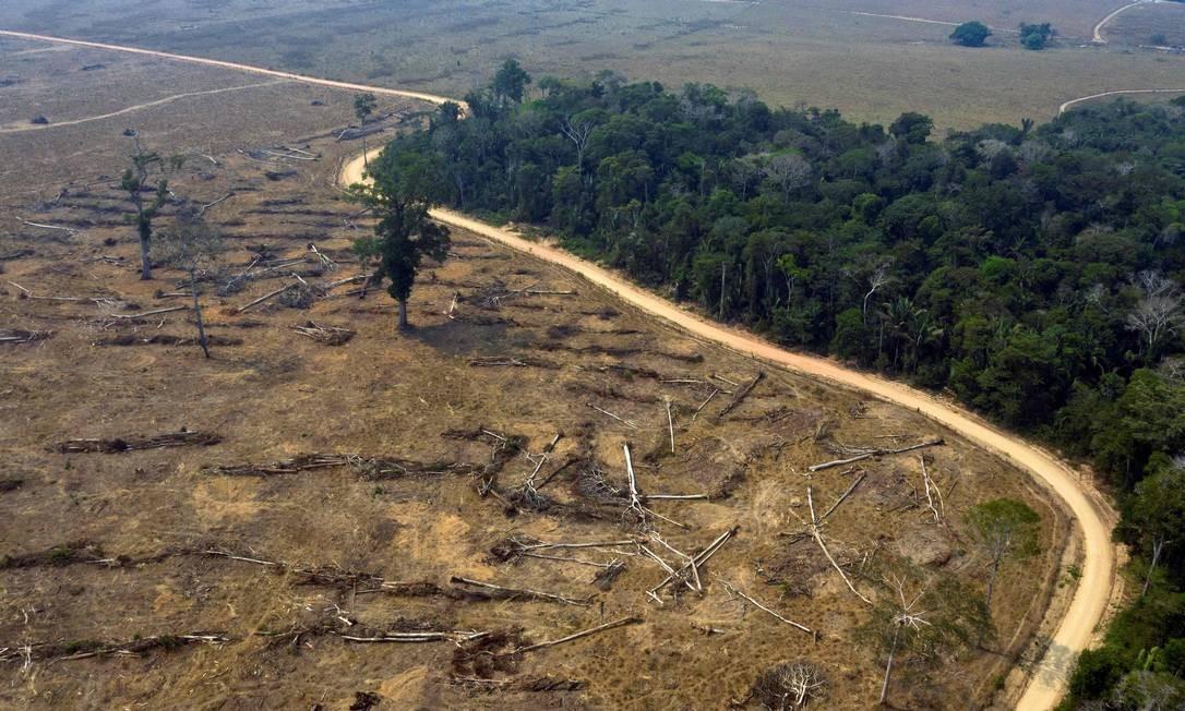 Área florestal queimada na região de Porto Velho, em Rondônia Foto: CARLOS FABAL/AFP