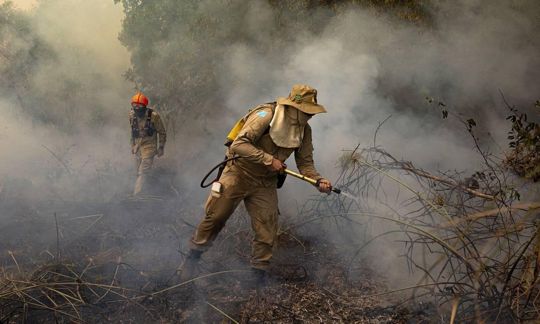 Bombeiros, brigadistas e voluntários se somam num esforço coletivo para conter as chamas no Pantanal do Mato Grosso Foto: Araquém Alcântara / Divulgação