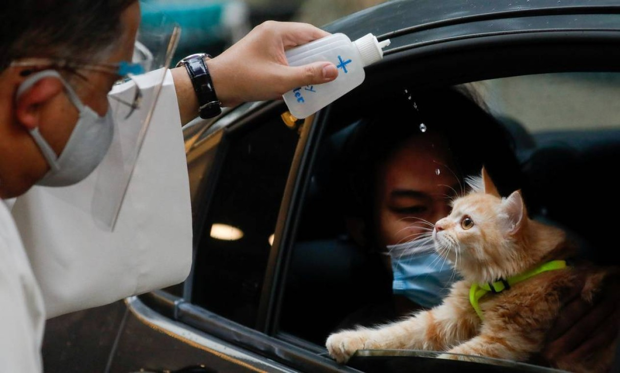 Gatinho recebe a bênção de dentro do carro sob os olhares atentos do tutor em dia mundial dedicado aos animais Foto: ELOISA LOPEZ / REUTERS