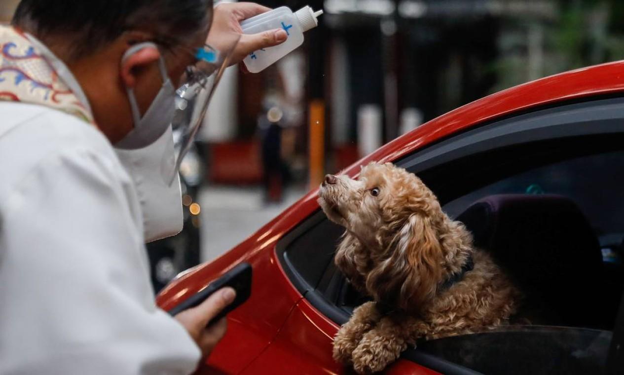 Cachorrinho atento para a água benta jogada pelo padre durante a cerimônia de Dia Mundial dos Animais; sistema drive-thru foi a ideia encontrada por filipinos em meio à pandemia Foto: ELOISA LOPEZ / REUTERS