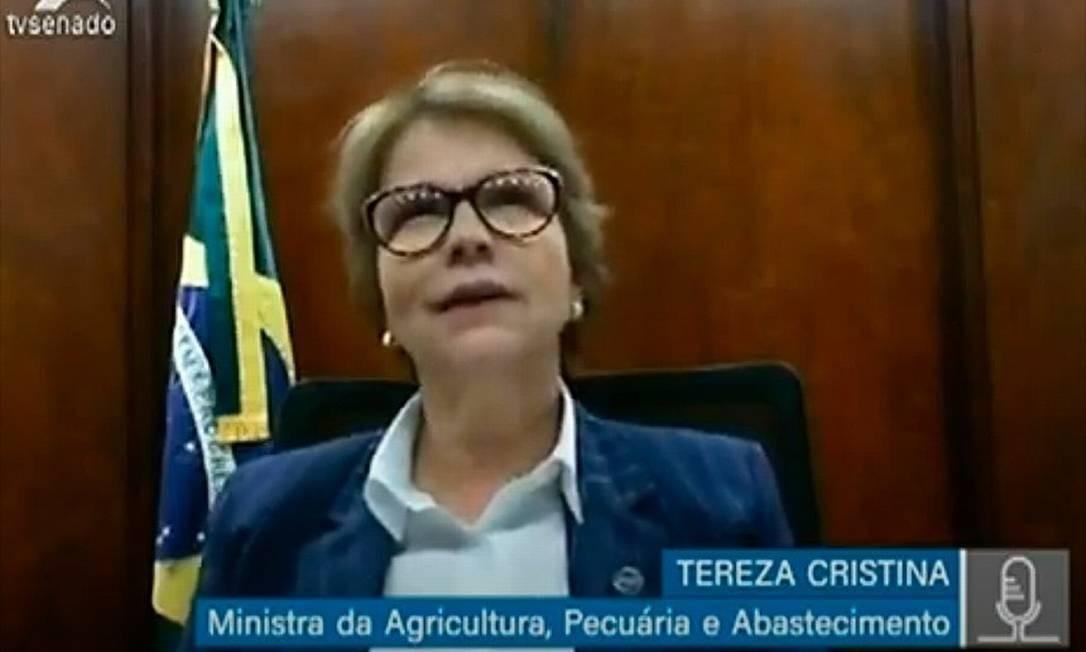 A ministra Tereza Cristina durante audiência pública remota da comissão temporária do Senado Foto: Agência Senado