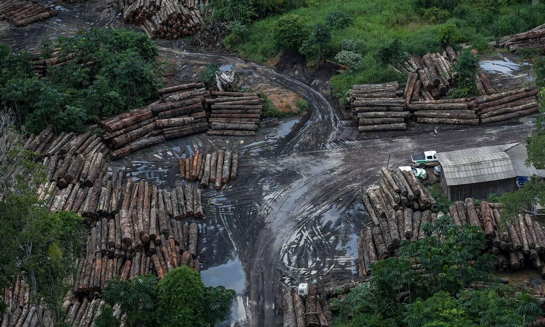Foto do Ibama mostra desmatamento na Amazônia Foto: Agência O Globo