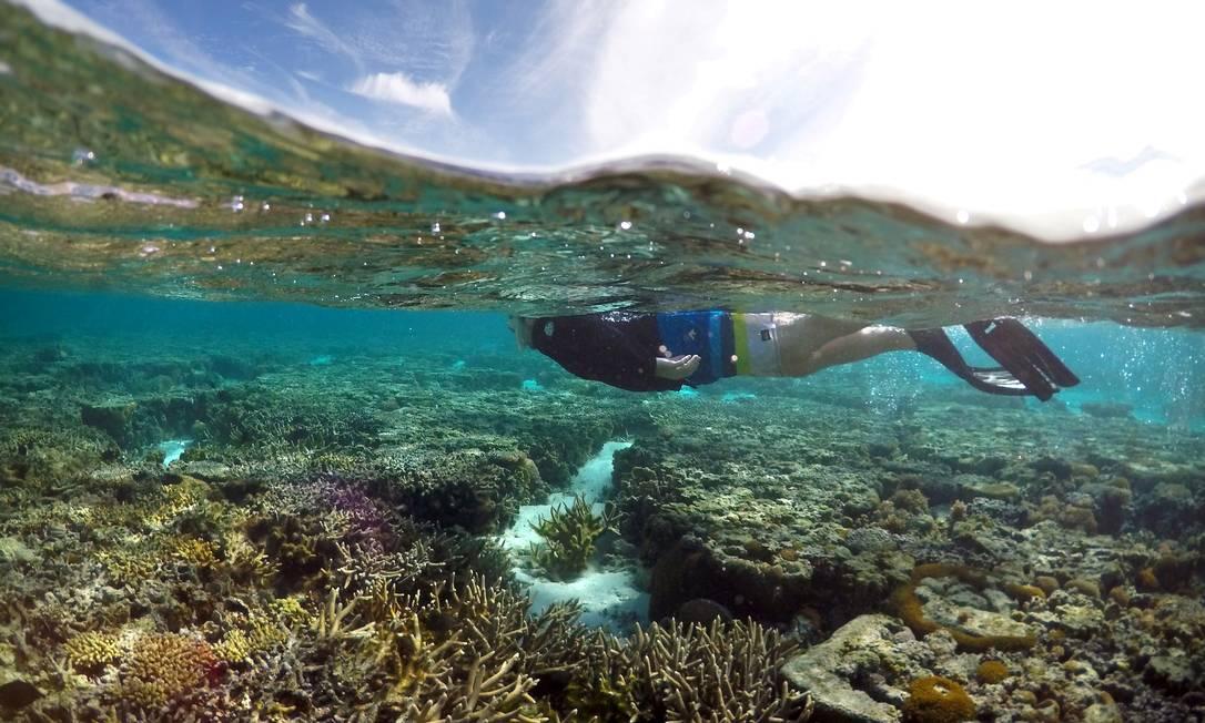 Turista nada sobre corais na Ilha Lady Elliot, na Grande Barreira da Austrália Foto: David Gray / REUTERS