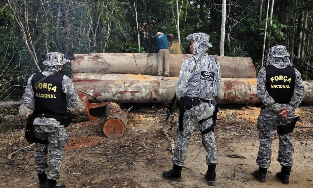 Força Nacional atua na Amazônia desde 2018 Foto: Mário Vilela/Funai