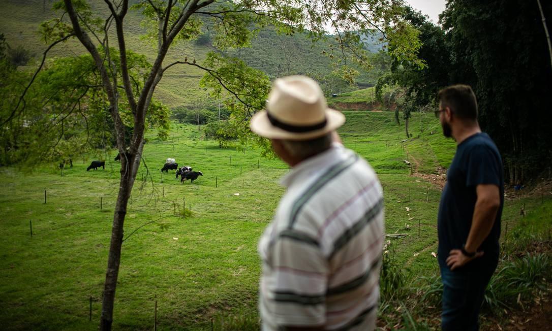 Produção de leite para a fabricação de queijos é a próxima aposta de pais e filho no Sítio Porteira do Sol, em Bom Jardim Foto: Hermes de Paula / Agência O Globo