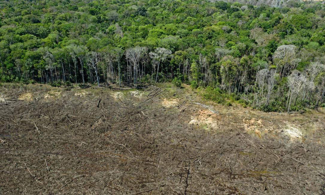 Foto aérea de arquivo mostra uma área de Floresta Amazônica desmatada próxima a Sinop, no estado de Mato Grosso Foto: Florian Plaucheur / AFP
