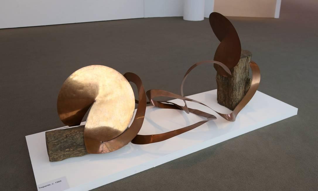 Obra da série 'Trepante', em exposição no Museu de Arte Contemporânea (MAC) de Niterói Foto: Pedro Teixeira / Agência O Globo