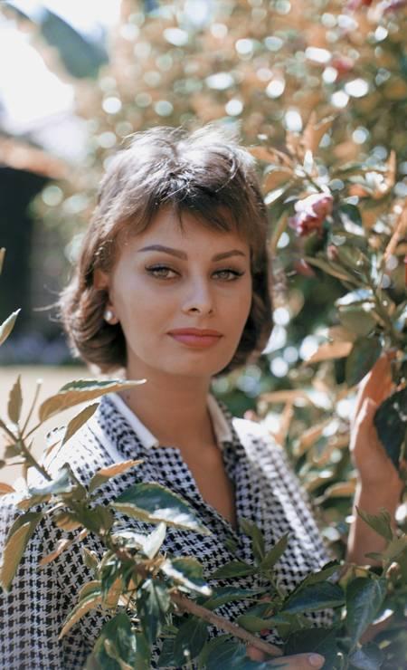 Sophia Loren, 1958 Foto: Donaldson Collection / Getty Images