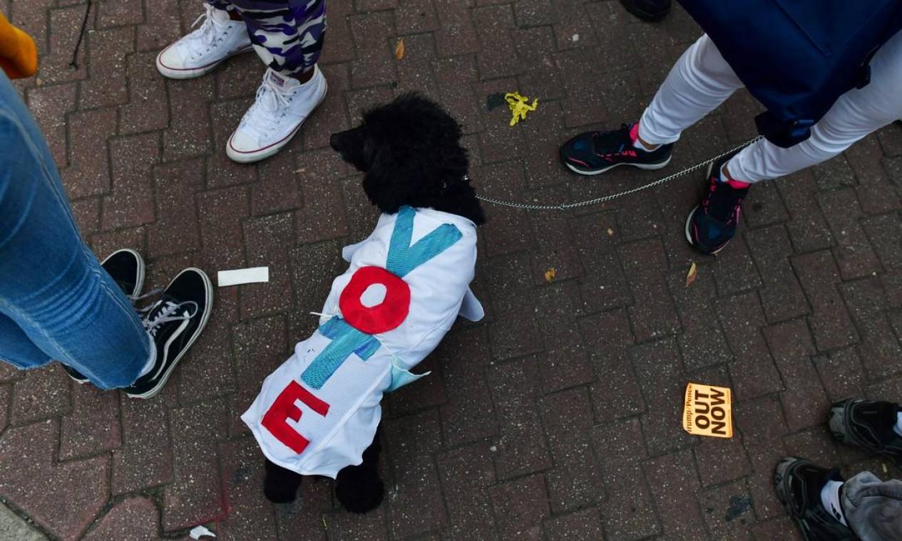 """Um cão usa uma jaqueta """"Vote"""" durante ato de apoiadores de Biden na Filadélfia Foto: MARK MAKELA / REUTERS"""