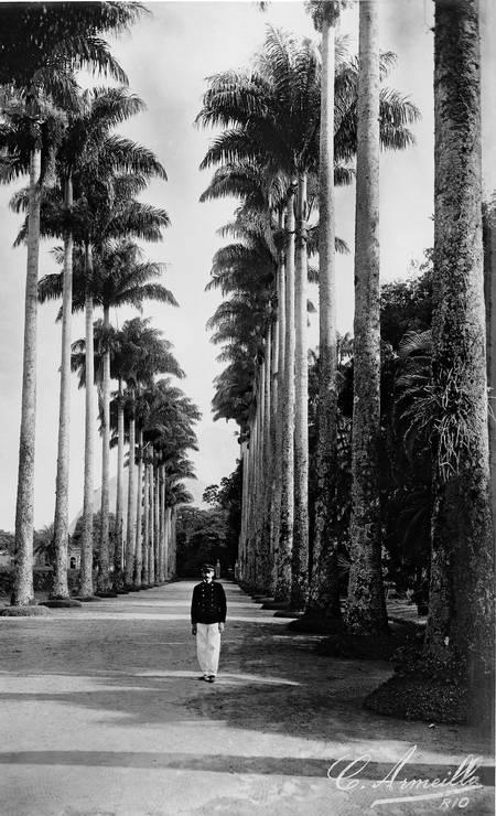 Aldeia das Palmeiras no Jardim Botânico. Todas as fotos eram reveladas por ele mesmo Foto: C. Armeilla