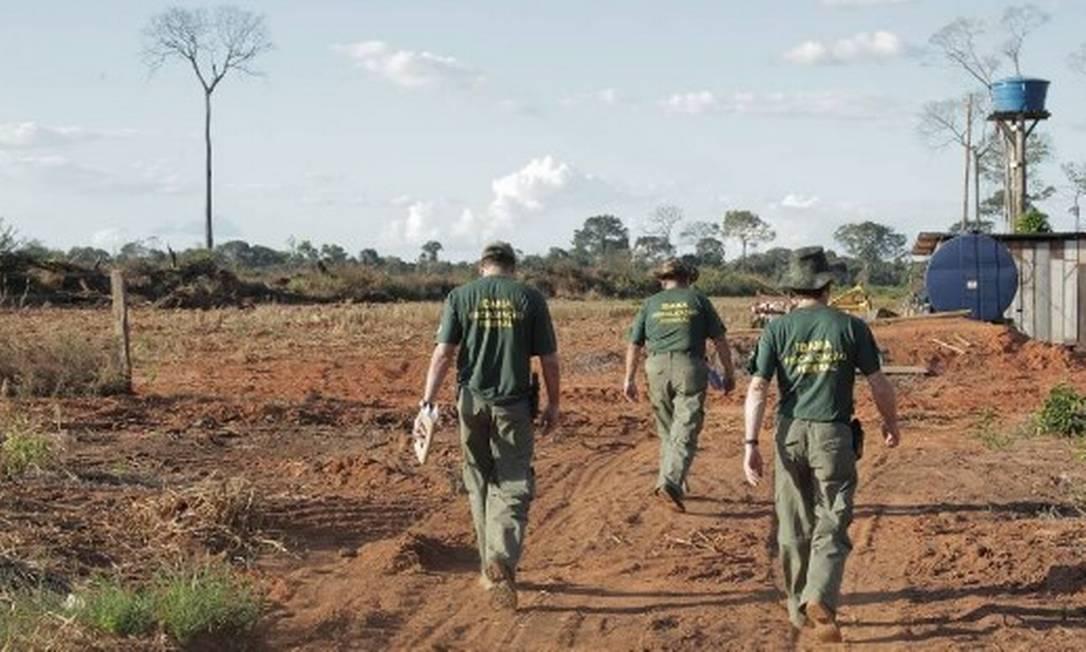 Funcionários do Ibama fazem operação no Mato Grosso Foto: Eliária Andrade/ Agência O Globo/26-5-2011
