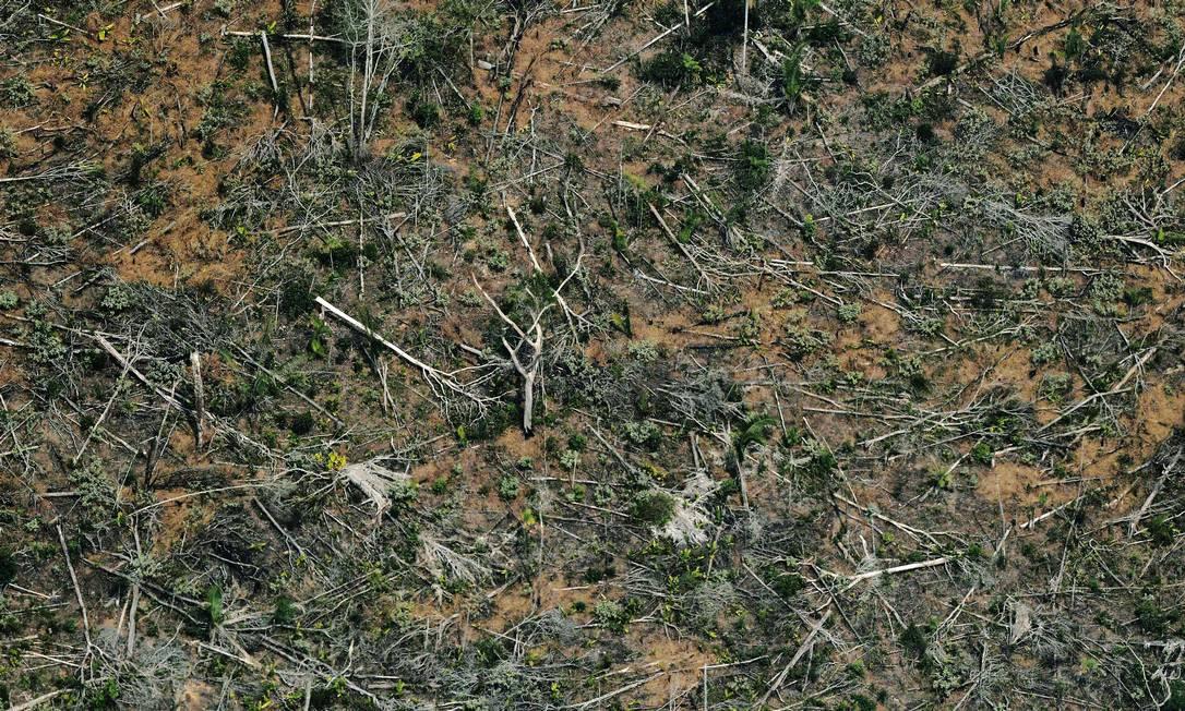 Desmatamento de território próximo a Porto Velho (RO): em maio, Human Rights Watch acusou governo de sabotar ações do Ibama Foto: Photo by Carl DE SOUZA / AFP/23-8-2019