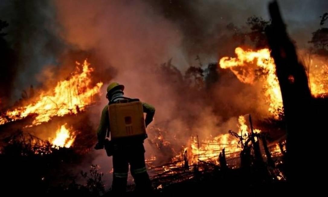 Brasil é soberano na Amazônia, mas deveria gerir a floresta para benefício de todos, diz eurodeputada Foto: Reuters