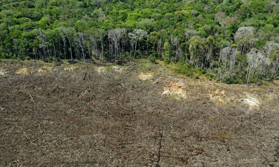 Área desmatada em Sinop, Mato Grosso Foto: FLORIAN PLAUCHEUR/AFP / AFP