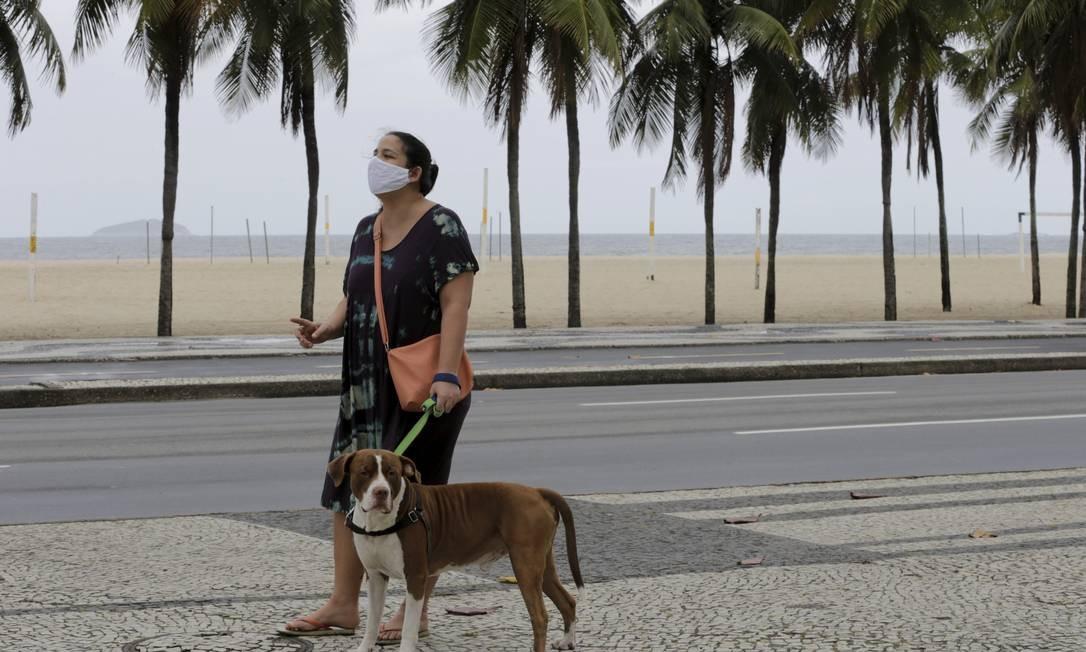 Nova lei obriga ônibus e VLTs a permitirem a entrada de animais domésticos de pequeno porte nos veículos Foto: Domingos Peixoto / Agência O Globo