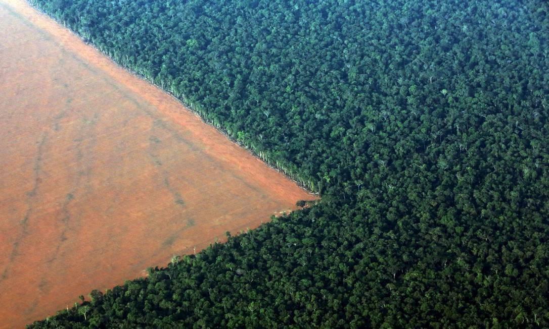 Floresta Amazônica Foto: PAULO WHITAKER/Reuters