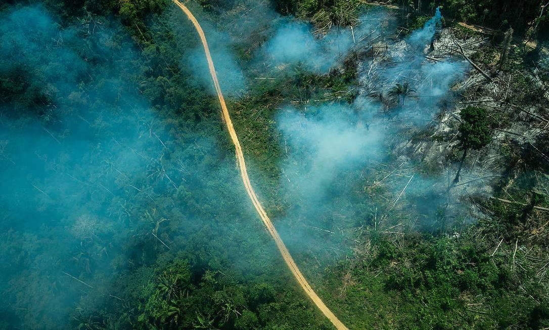 A Terra Indígena Ituna-Itatá , ainda não homologada, está entre as mais desmatadas em 2019 Foto: Fábio Nascimento / Greenpeace/Divulgação