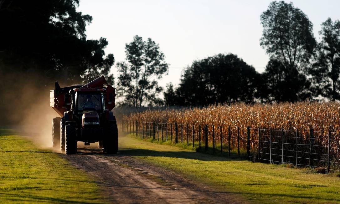 Trator passa ao lado de plantação em Chivilcoy, nas proximidades de Buenos Aires: agricultores tentam fazer governo rever veto à exportação de milho Foto: AGUSTIN MARCARIAN / AGUSTIN MARCARIAN/REUTERS/8-4-2020