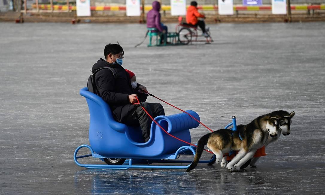 Homem e uma criança usam são puxados por cachorros em trenó em um lago congelado em Pequim, capital da China Foto: WANG ZHAO / AFP