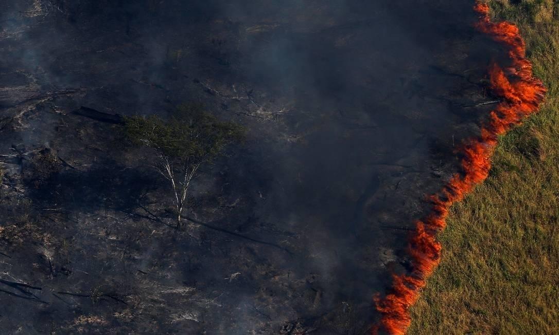Queimada em florestas brasileiras Foto: Bruno Kelly/Agência O Globo