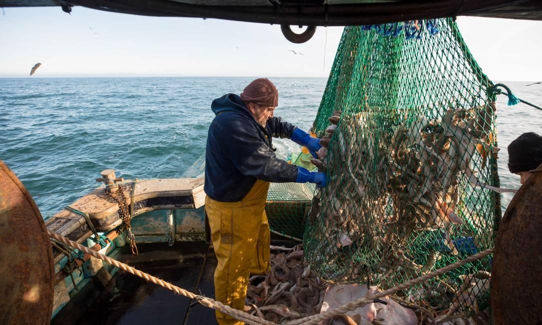 Pescadores recolhem peixes no Canal da Mancha, no Reino Unido Foto: Jason Alden / Bloomberg/10-01-2021