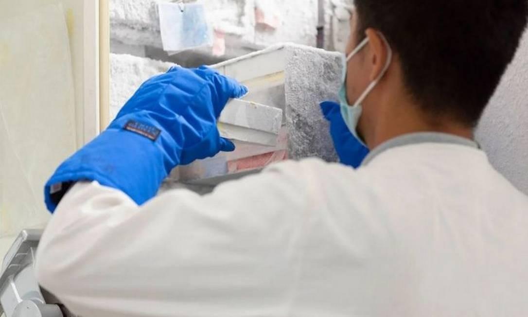 Duong e sua equipe estudam o vírus nipah e como combatê-lo Foto: SA SOLA