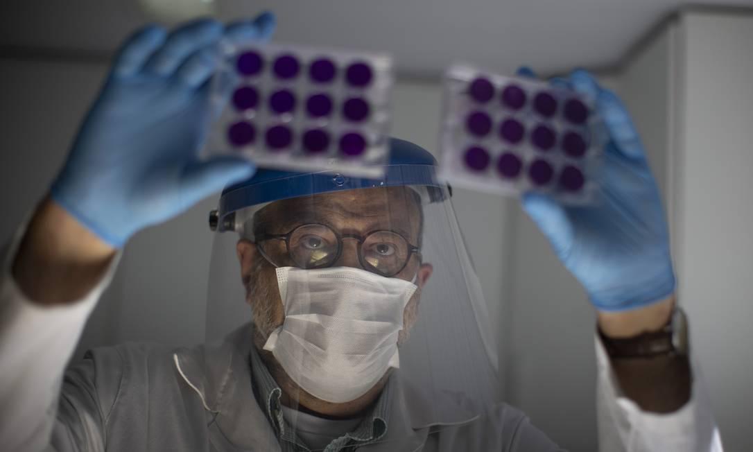 Professor Amilcar Tanuri, professor titular do laboratório de virologia da UFRJ. Foto: Márcia Foletto / Agência O Globo