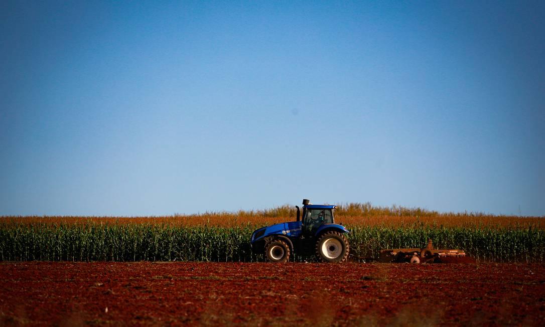 Fazenda no Distrito Federal, em Paranoá: agropecuária foi o único setor que cresceu em 2020 Foto: Pablo Jacob / Agência O Globo