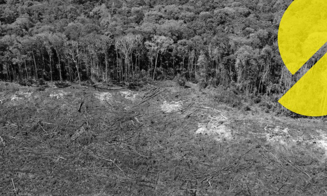 Foto aérea de arquivo tirada em 07 de agosto de 2020 de uma área desmatada próxima a Sinop, Estado de Mato Grosso, Brasil Foto: Florian Plaucheur / AFP