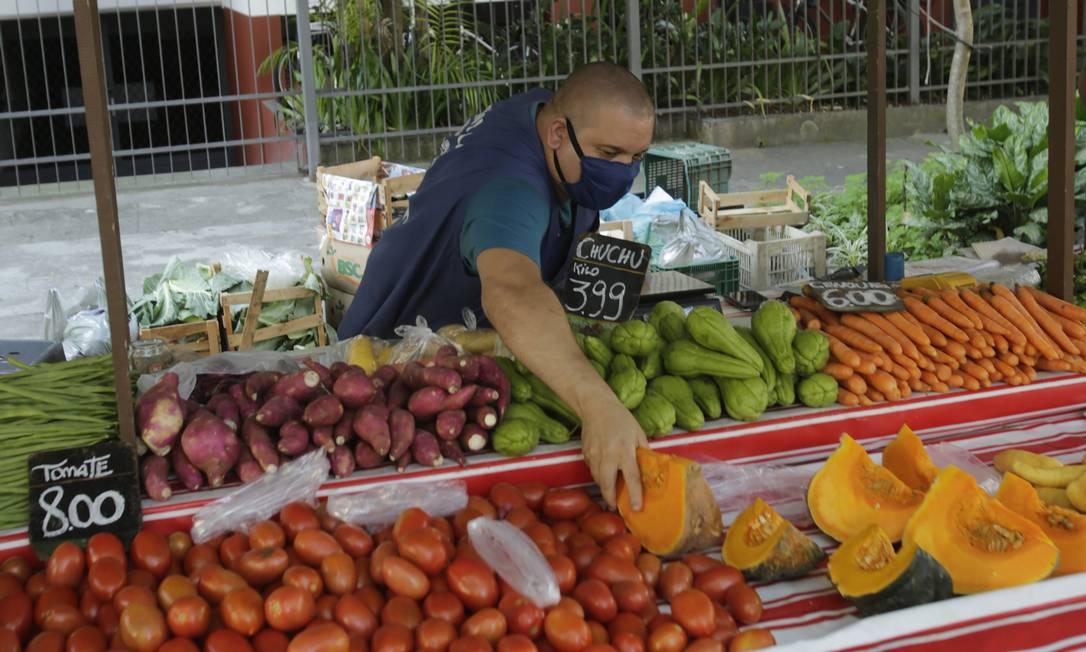 Abóbora está entre os legumes da estação Foto: Antonio Scorza / Agência O Globo