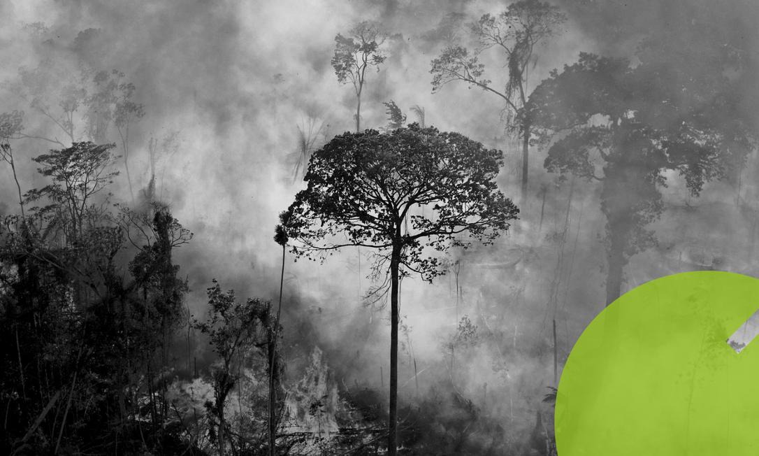 Queimada na floresta em Novo Progresso, no Pará: grupos de pressão vêm apresentando propostas diferentes sobre como lidar com Brasil no tema ambiental Foto: Carl de Souza / AFP/15-8-2020