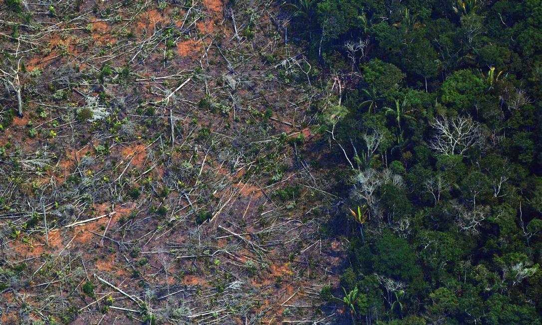 Área afetada por desmatamento no estado de Rondônia em 23 de agosto de 2019 Foto: CARL DE SOUZA / AFP