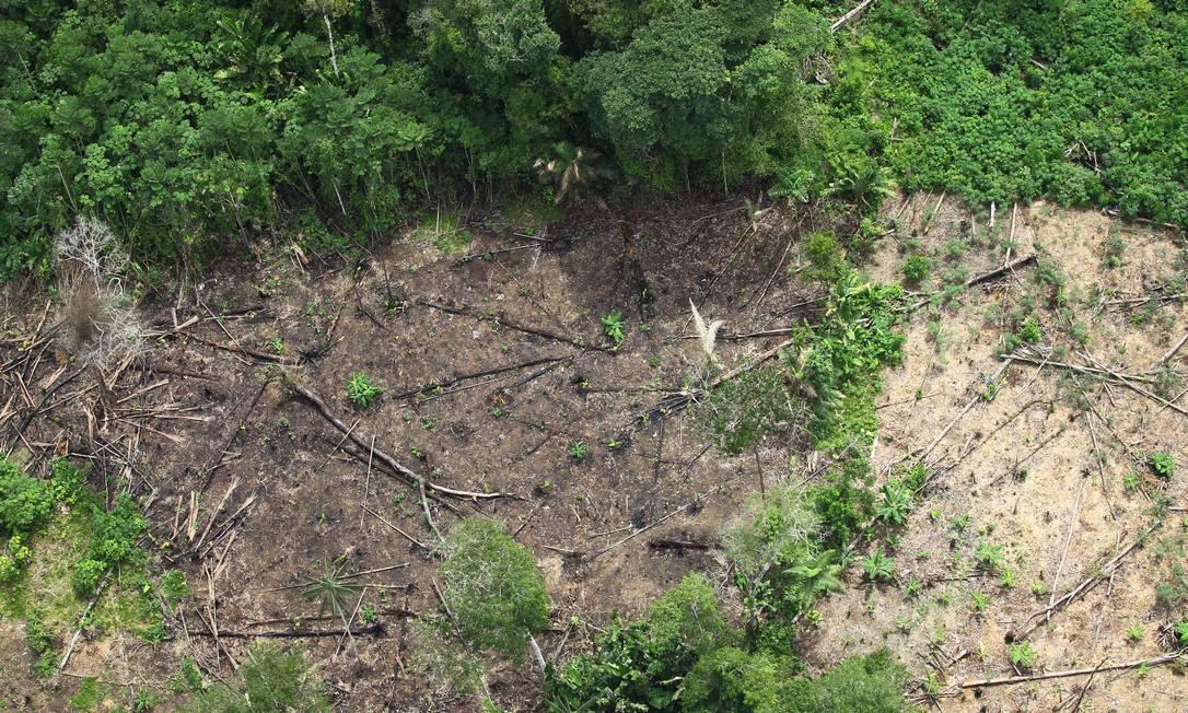 Desmatamento na Floresta Amazônica, nas proximidades de Tabatinga (AM) Foto: Jorge William/11.12.2020 / Agência O Globo