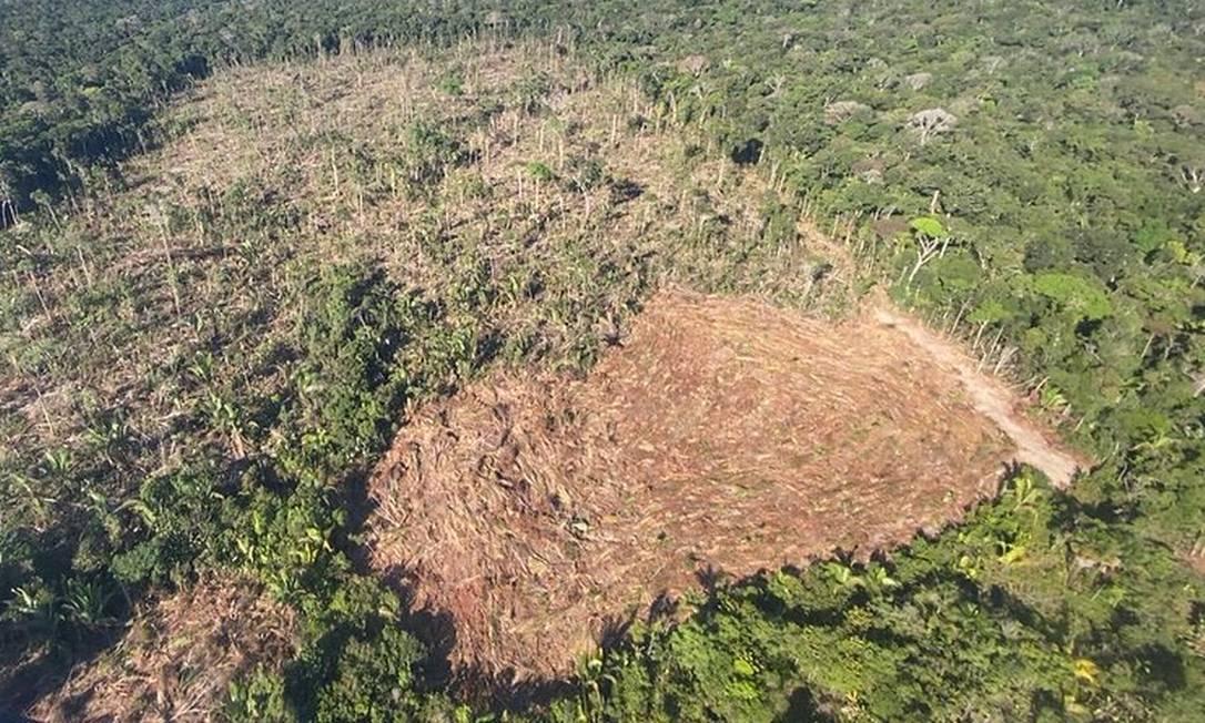 Fotografia aérea de floresta desmatada em Apuí, município do interior do Amazonas. Foto: Divulgação/Operação Verde Brasil/22-06-2020
