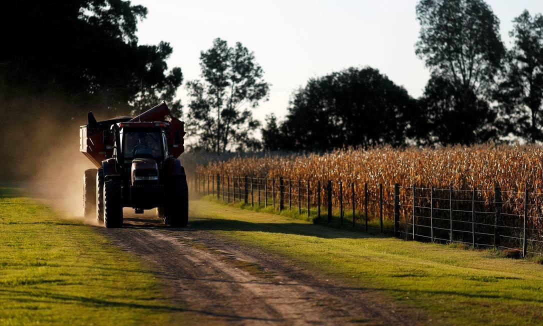 Trator passa ao lado de plantação em Chivilcoy, nas proximidades de Buenos Aires, em abril de 2020; produtores rurais protestam contra decisão de Alberto Fernández de proibir exportação de milho por dois meses para baixar preços de alimentos Foto: AGUSTIN MARCARIAN / REUTERS