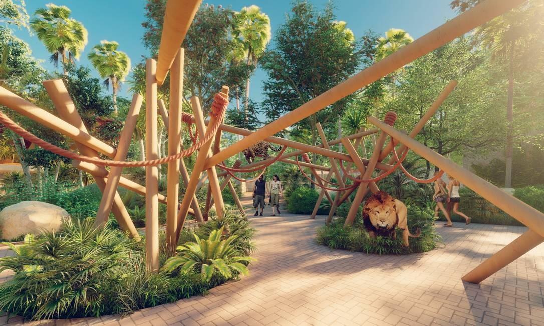Novo zoo teve aumento de 35% da área de vegetação após reformas que começaram em novembro de 2019, quando oespaço foi fechado Foto: Divulgação/ CICLO Arquitetura