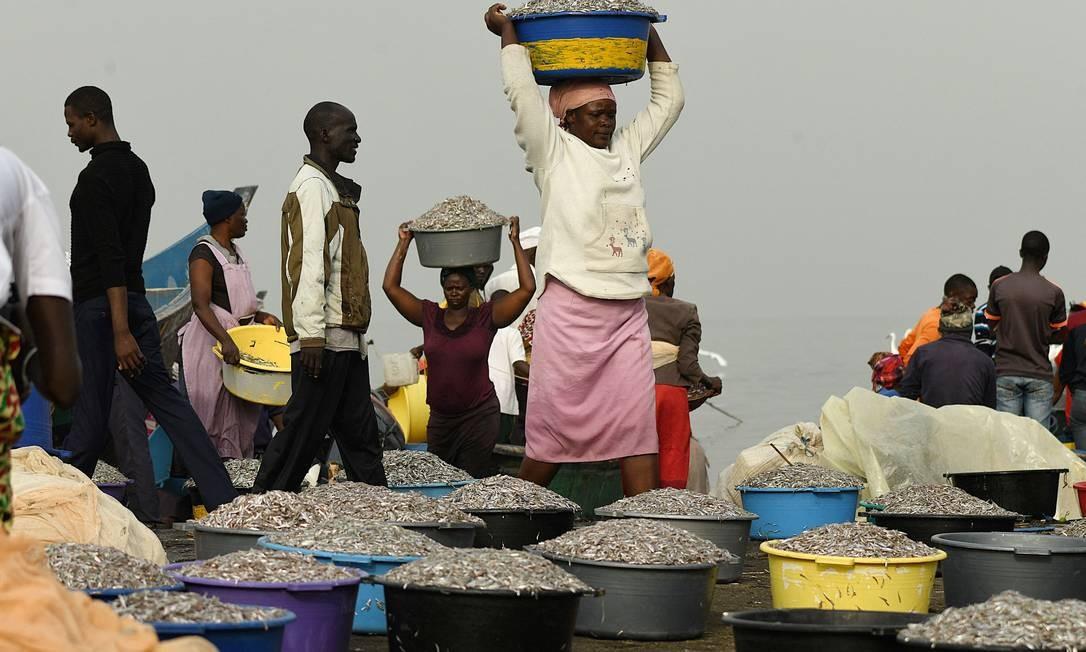 Vendedores de peixe carregam ciprinídeo prateado (também conhecido como omena na língua nativa) antes de vendê-lo perto da praia de Koguna em Mbita, condado de Homabay, no oeste do Quênia Foto: SIMON MAINA / AFP