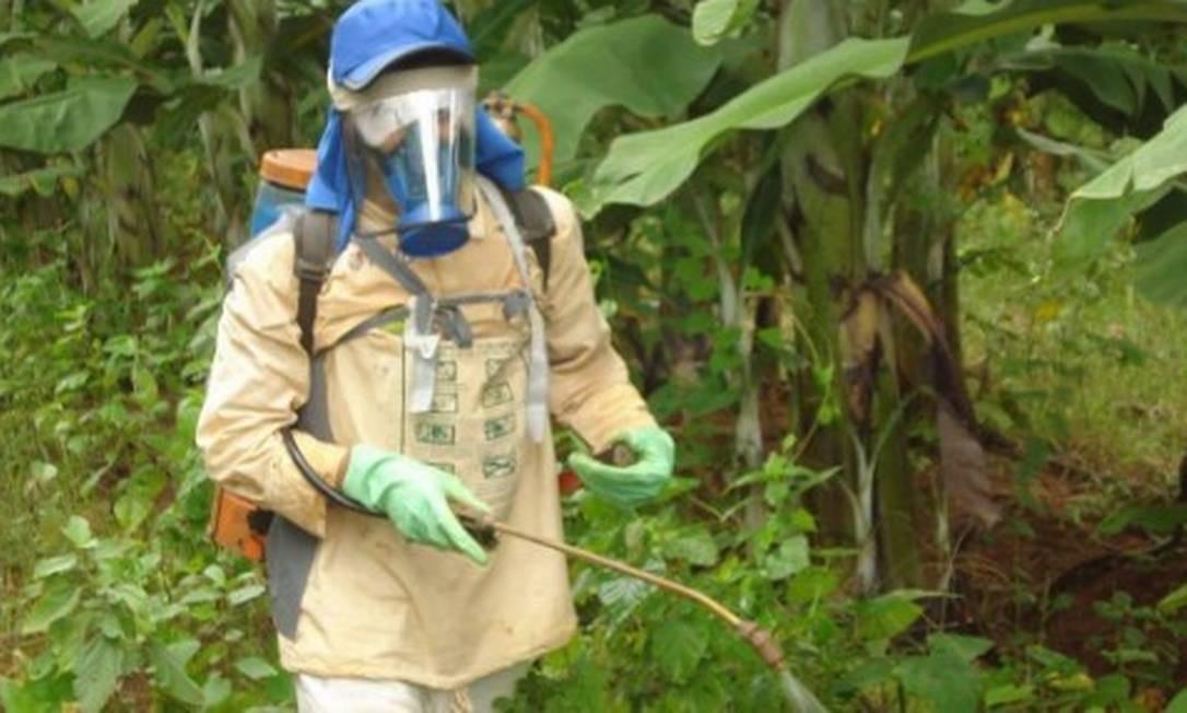 Aplicação de agrotóxicos: 80% dos novos produtos são considerados perigosos para o meio ambiente Foto: Raquel Rigotto/Infoglobo
