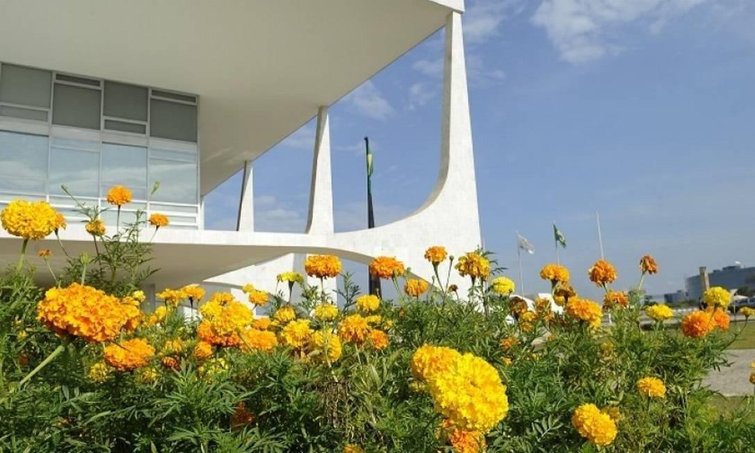 Edital do Planalto prevê gasto de até R$ 430 mil com arranjos de flores para decoração Foto: Agência Brasil