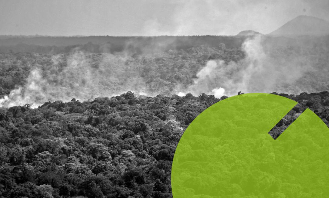 Meio Ambiente tem o menor orçamento em 21 anos Foto: Editoria de Arte