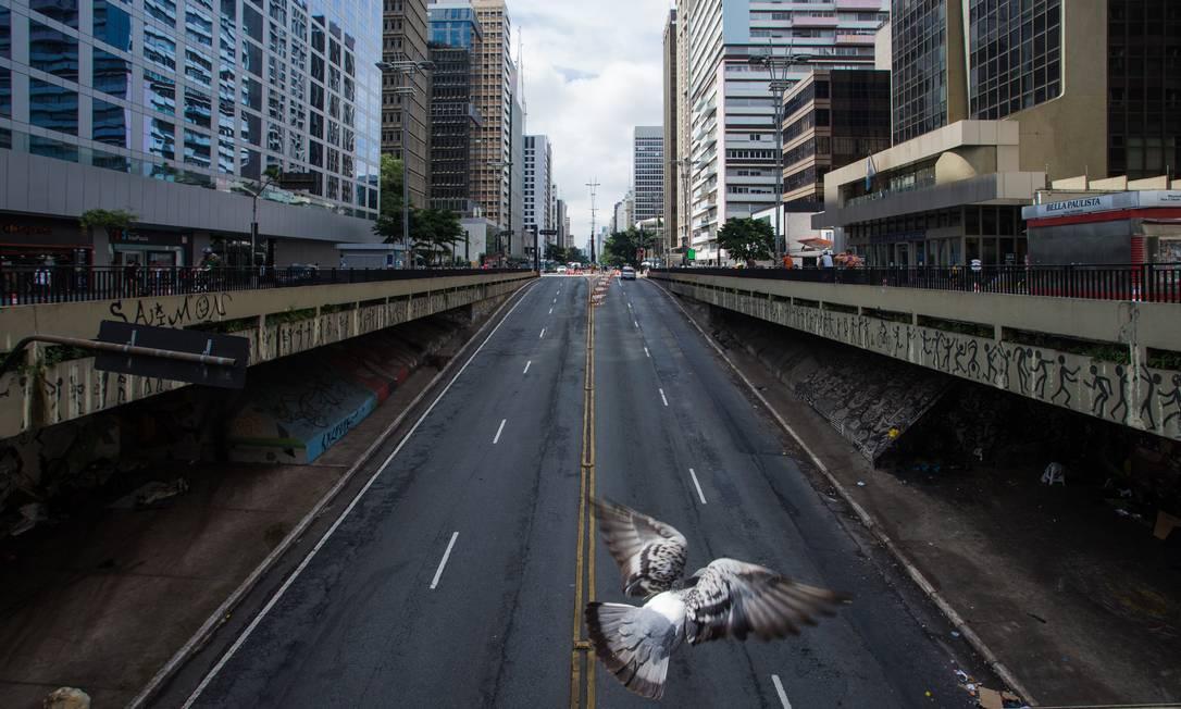 Pomba atravessa Avenida Paulisa praticamente deserta, depois que governo do São Paulo decretou fase vermelha Foto: Edilson Dantas / Agência O Globo