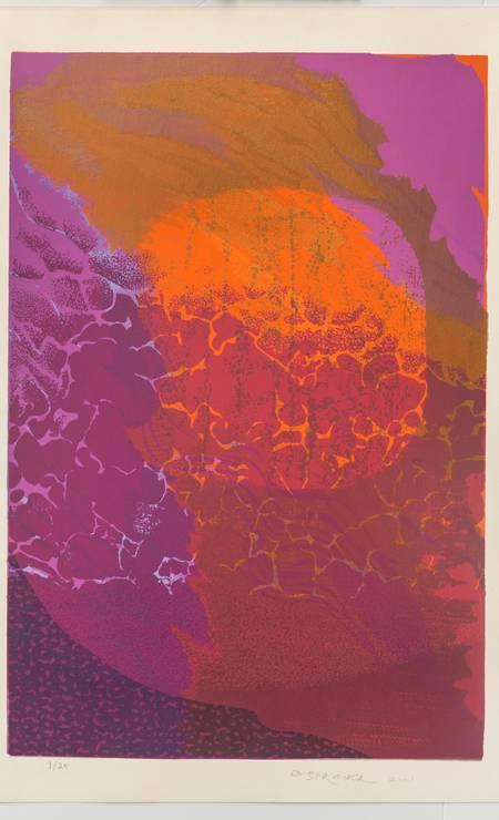 Serigrafia sobre papel de 2001, em cartaz no MAM Foto: Vicente de Mello/Divulgação