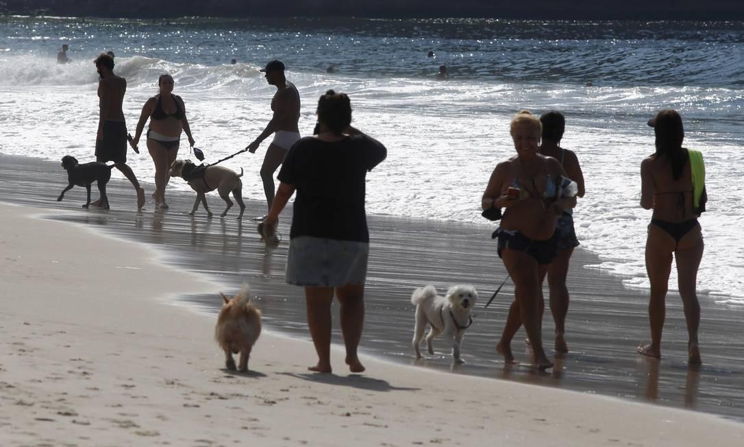 No Leme, banhistas sem máscara e com cachorros passeiam pela areia Foto: FABIANO ROCHA / Agência O Globo