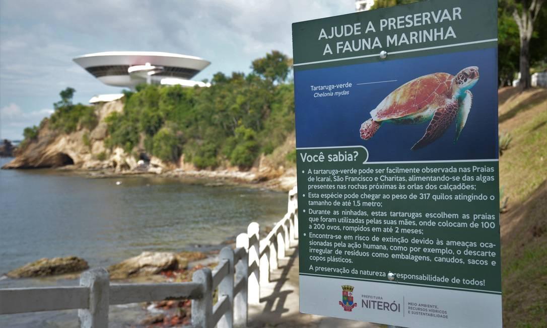 Praia da Flechas. O local recebeu uma das seis placas sobre a ameaça à tartaruga-verde; há outras na Boa Viagem, em Icaraí, em São Francisco e em Charitas Foto: Divulgação
