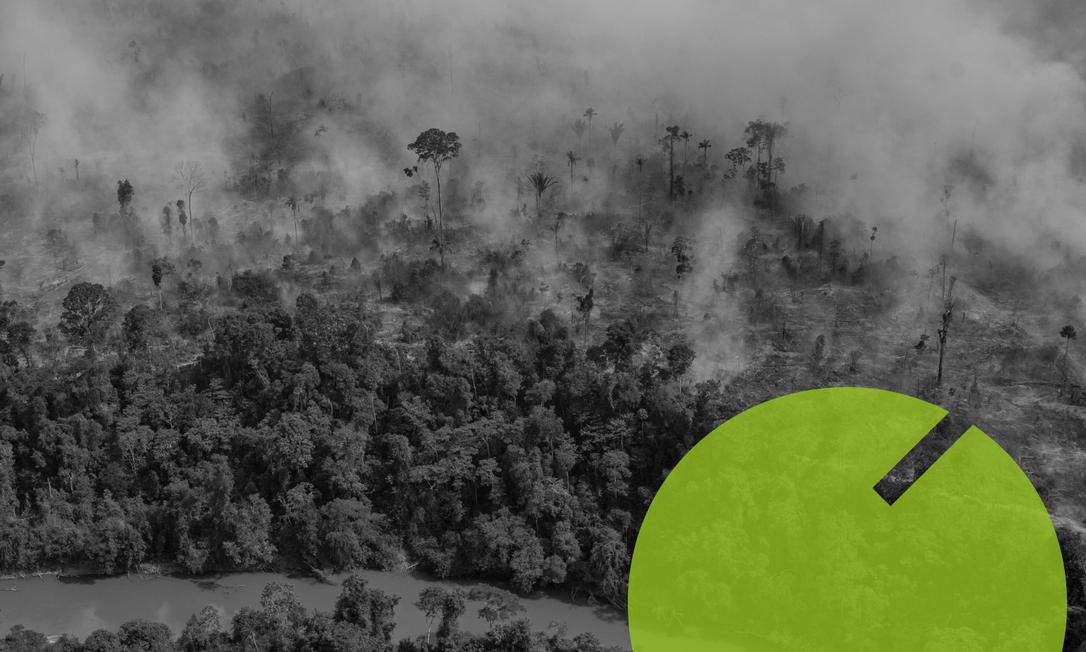 Queimada em região da Amazônia no estado de Rondônia Foto: Editoria de arte
