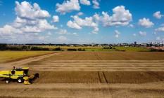 Colheita de soja avança no Paraná Foto: O Globo