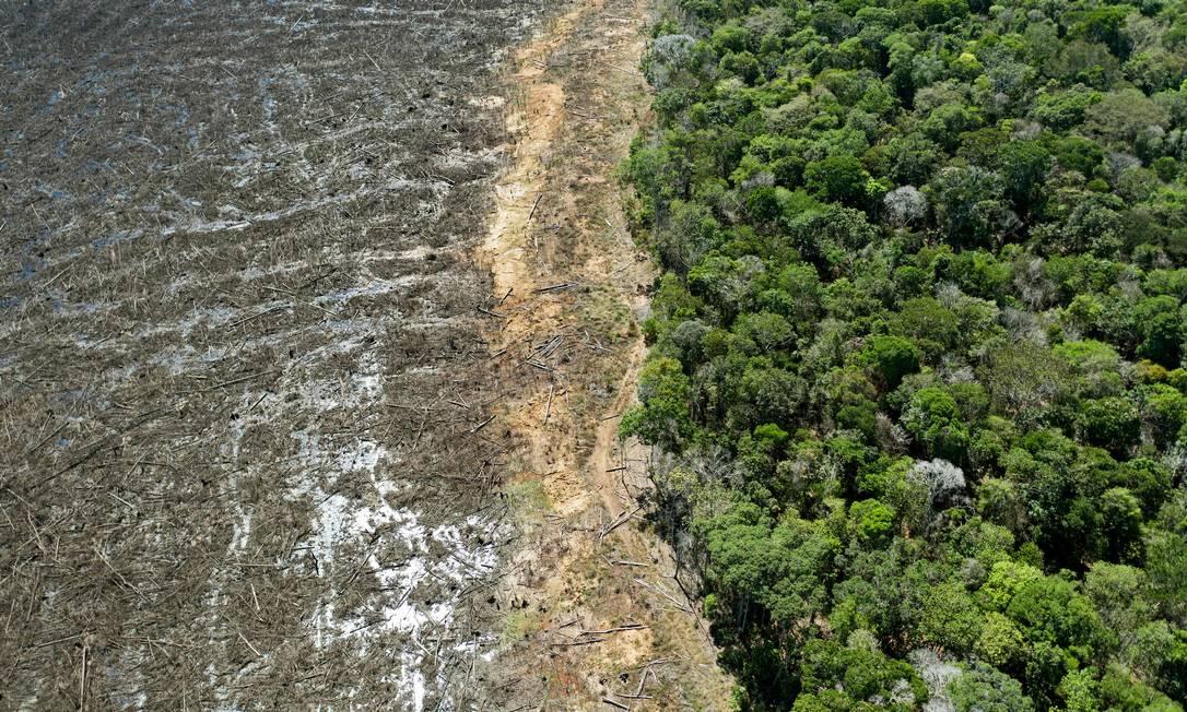 Área desmatada perto de Sinop, no Mato Grosso, em agosto de 2020 Foto: FLORIAN PLAUCHEUR / AFP