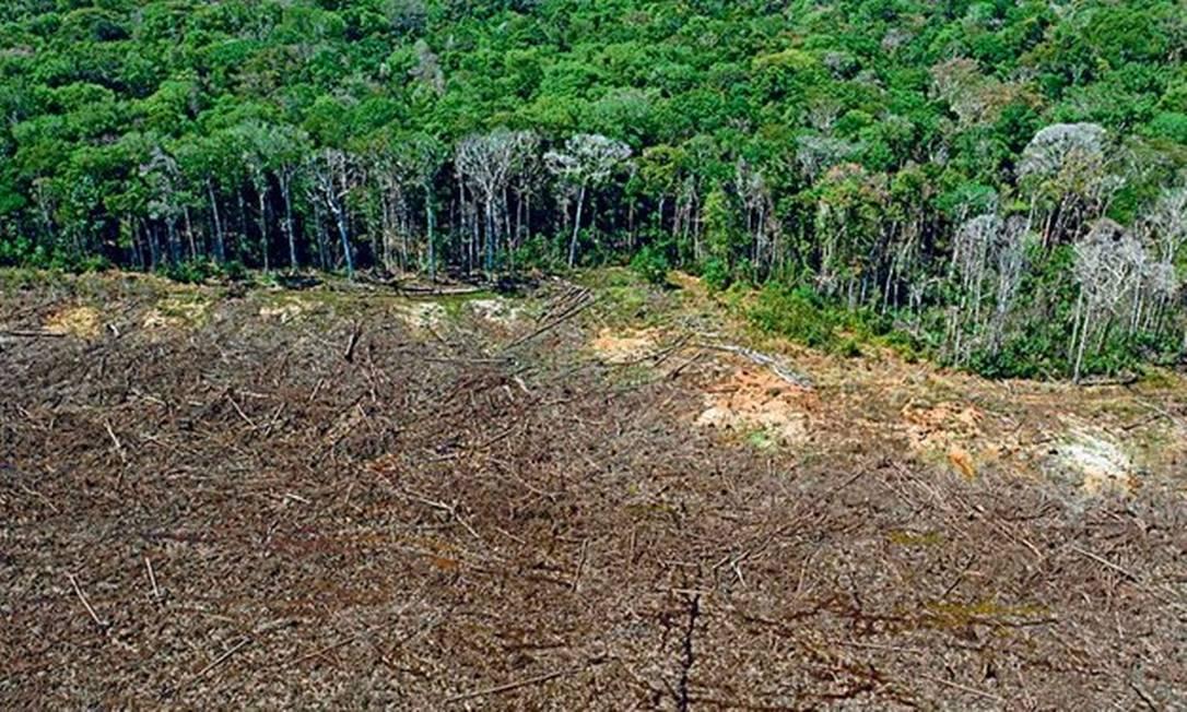 Vista aérea de Sinop (MT): plano apresentado por Mourão quer reduzir a devastação da Amazônia aos níveis da média registrada entre 2016 e 2020, equivalente a 8,7 mil km², até o fim de 2022 Foto: Florian PLAUCHEUR/AFP/7-8-2020