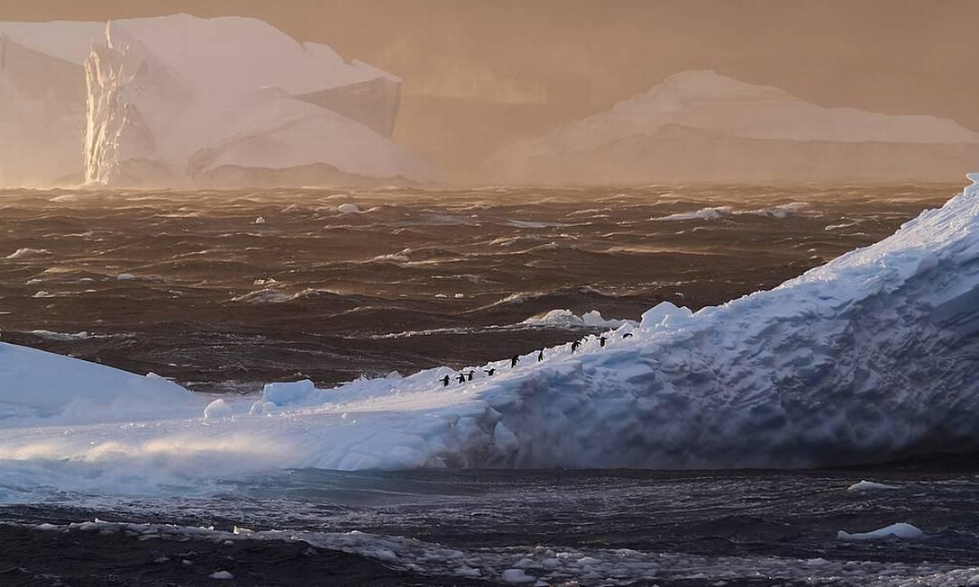 A melhor foto na categoria paisagem foi essa, de David Mantripp, que registrou uma fileira quase imperceptível de pinguins caminhando sobre um bloco de gelo gigante, num cenário típico da Antártica Foto: David Mantripp / Shackleton/Divulgação